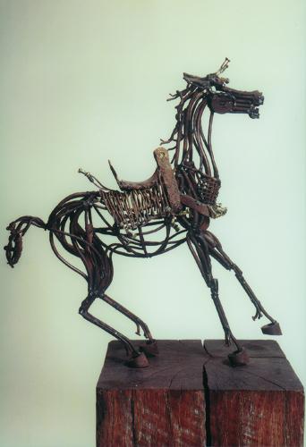 Cheval arabe © Dumont
